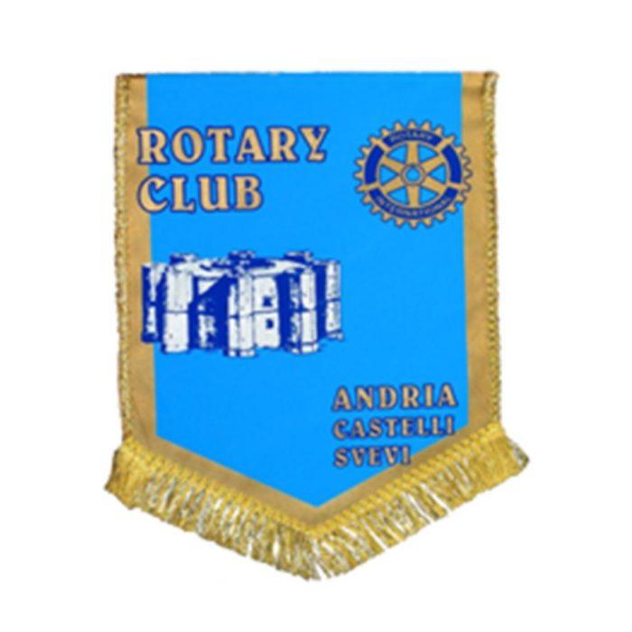 https://www.rotary2120.org/wp-content/uploads/2019/04/andria-700x700.jpg