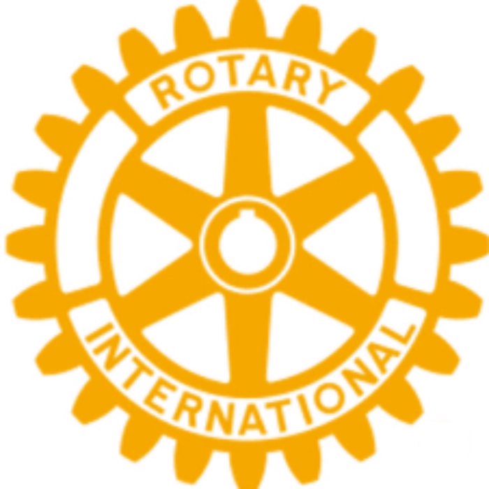 https://www.rotary2120.org/wp-content/uploads/2019/04/icona-700x700.png